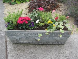 A flower box in bloom.