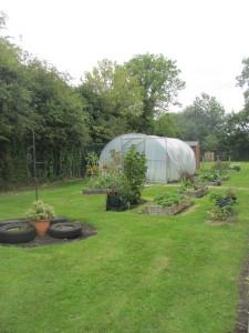Our garden in September.