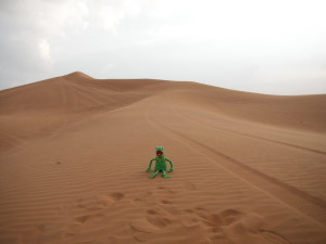 Kermit in the desert.