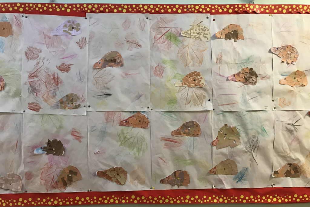 Junior and Senior Infants made beautiful leaf rubbings and hedgehogs.
