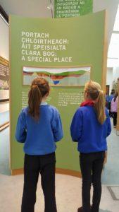 At Clara Bog Visitor's Centre