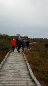 On the board walk at Clara Bog.